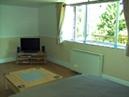 Little Fingerling Cottage - Bedroom / Living Room