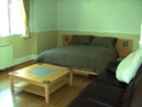 Little Fingerling Cottage - Bedroom / Living Room