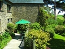 Little Fingerling Cottage - Terrace